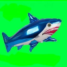 rekin-granatowy