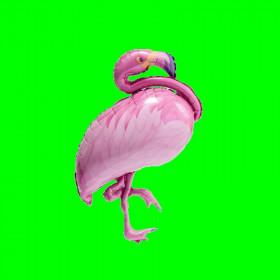 Balon  flaming różowy-14 cali
