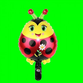 Balon biedronka-14 cali