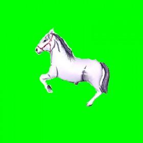 Balon włoski koń biały-30 cm