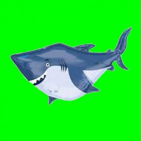Rekin  -100 cm