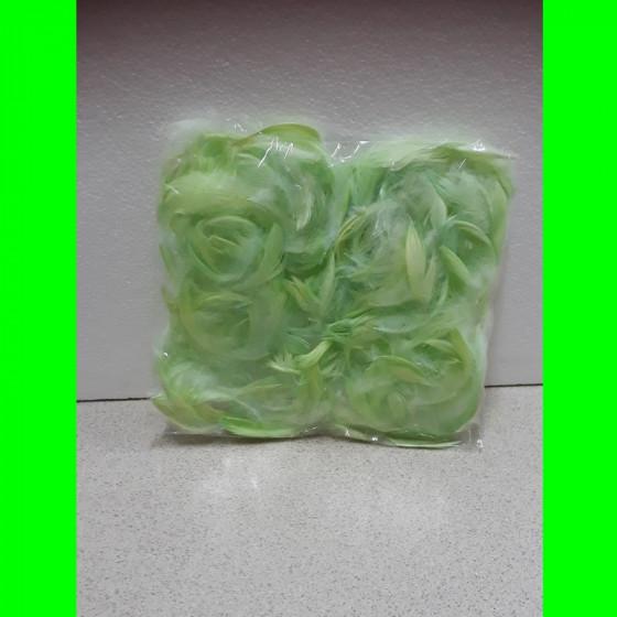 Piórka zielone