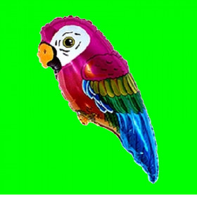 Balon włoski -papuga-30 cm